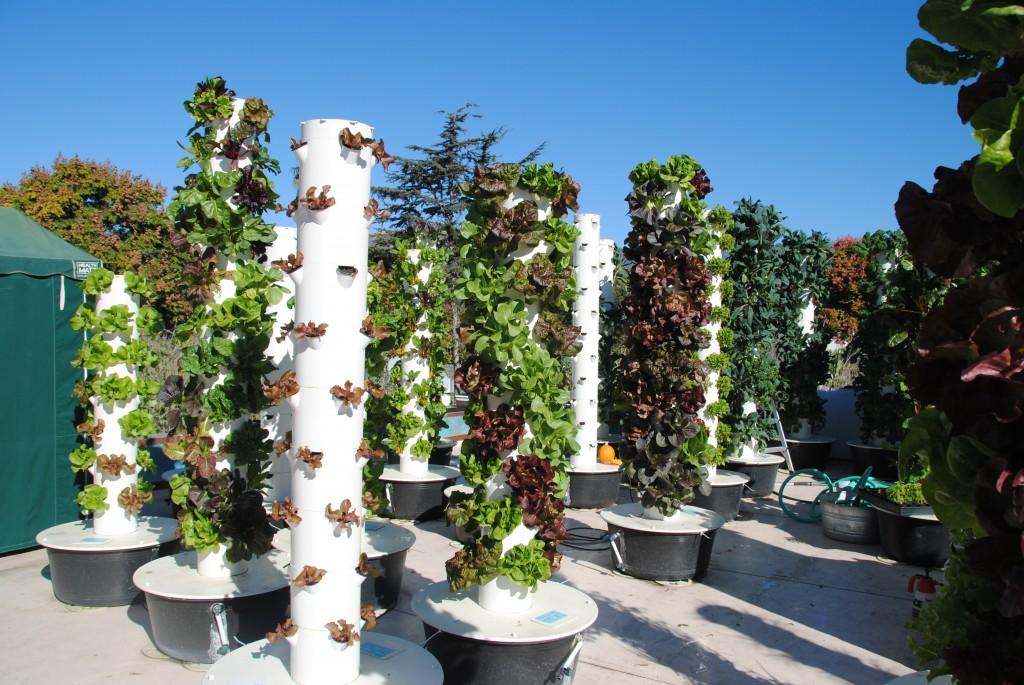Aeroponic Tower Gardens Garden Ftempo